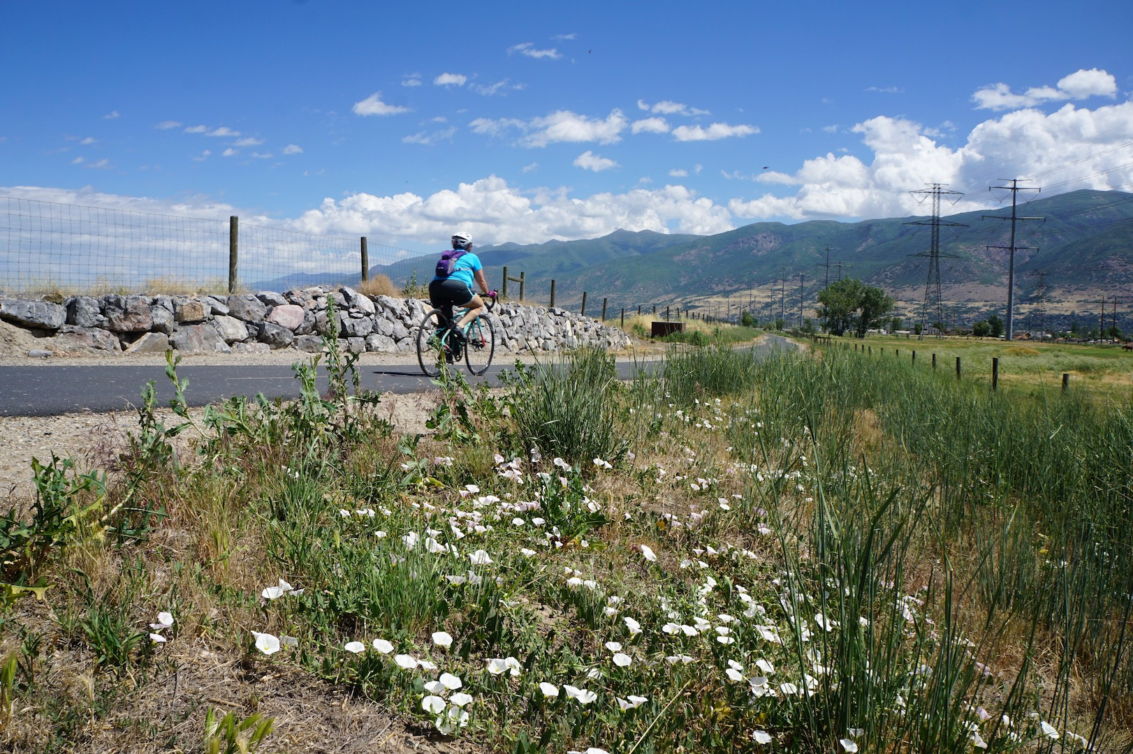 A Bicyclist Rides The Legacy Trail, Part Of The Golden Spoke Network. Photo Courtesy Of Rails To Trails Magazine.